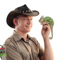 Reptile roadshow-6